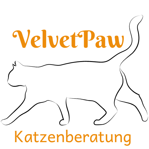 VelvetPaw Katzenberatung